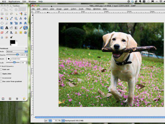 Professionelle Bildbearbeitung zum Nulltarif. Wir zeigen die besten Tools.
