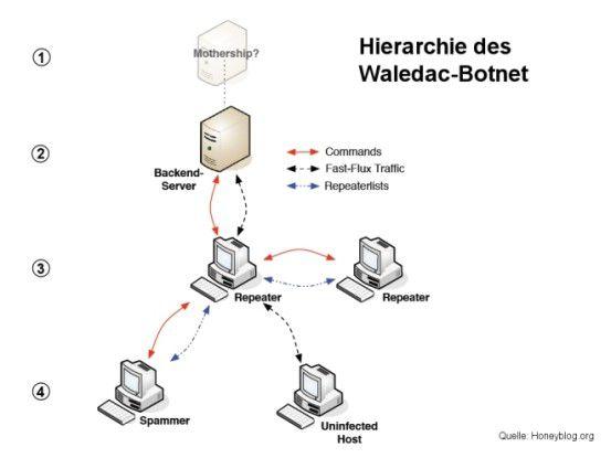 Hierarchie des Waledac-Botnetzes.