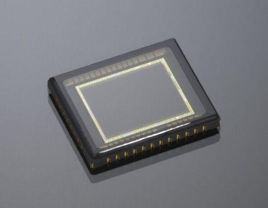 CCD-Sensor von Nikon