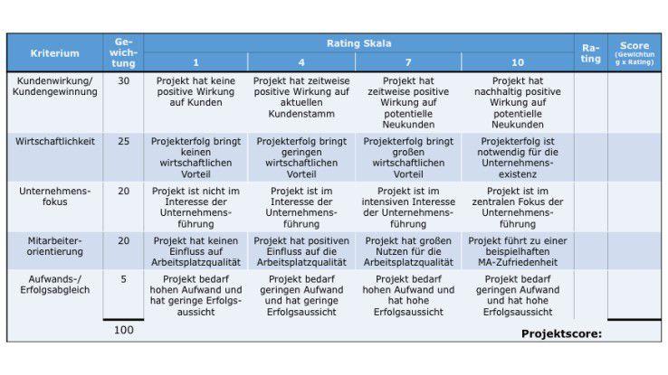 Abb. 2: Beispiel für ein standardisiertes Projekt-Scoring