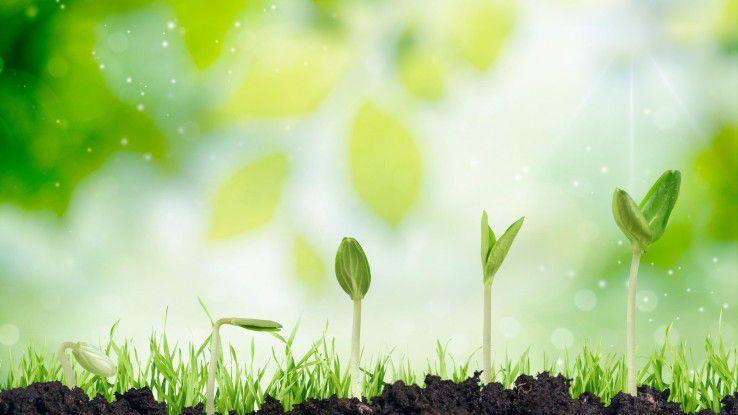 """Deloittes Wettbewerb """"Technology Fast 50"""" für Technologieunternehmen zeichnet schnelles Wachstum aus."""