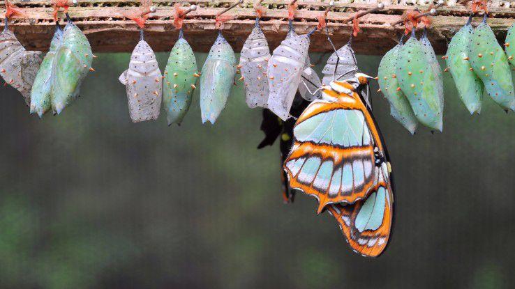 Permanente Change-Prozesse müssen gemanagt und geführt werden.
