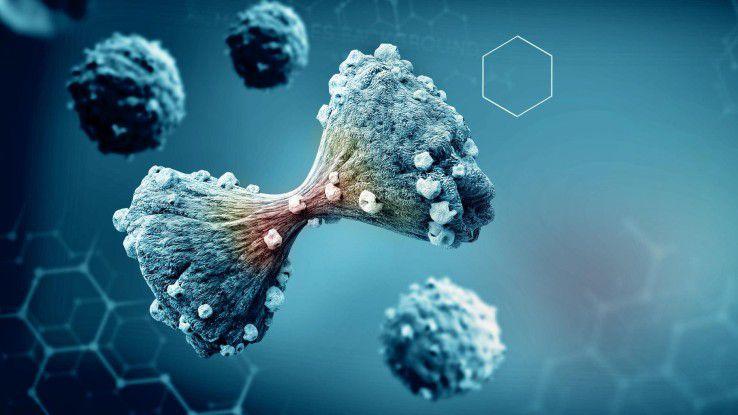 Aus kleinsten Gewebeproben - Bluttropfen genügen - können Informationen über Krebszellen gewonnen werden.