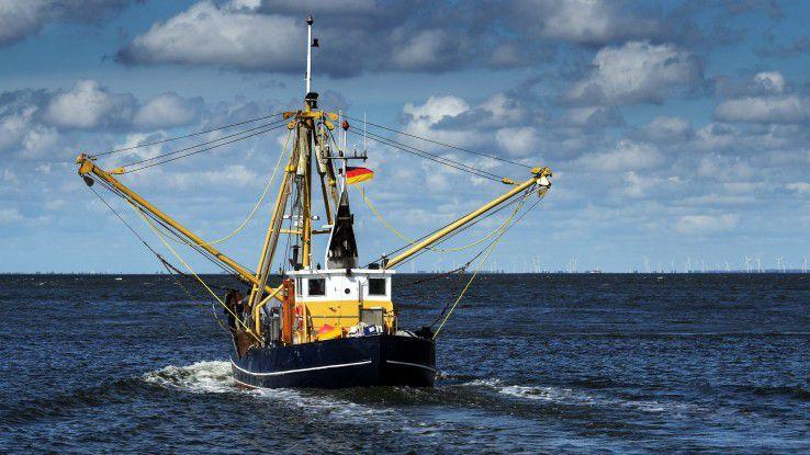 Ein IT-System für eine lückenlose EU-weite Überwachung der Fischfangquoten zu entwickeln, ist eine herausfordernde Aufgabe. Der Bundesanstalt für Landwirtschaft und Ernährung gelang das mit Low-Code-Programmierung und Design Thinking.