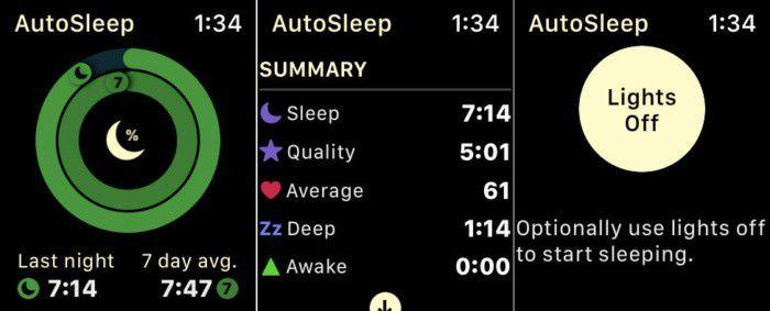 Der Look der App orientiert sich stark an den schon von Apple gewöhnten Ringen.