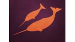 "Linux-Distribution ""Natty Narwhal"": Ubuntu 11.04 im Praxis-Test - Foto: Jürgen Donauer"