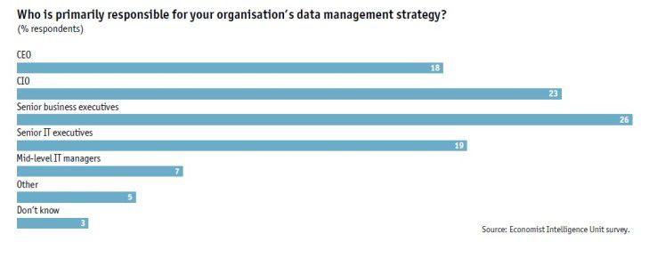 CIOs und Senior Business Executive sind die Hautpverantwortlichen für die Datenmanagement-Strategie.
