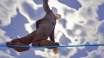 Aufbruch in die Cloud: Pioniere erkunden die IT-Wolke - Foto: Jakub Jirsak, Fotolia.com