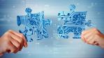 Collaboration und Produktivität im Fokus: Die besten Social Enterprise-Tools für KMU - Foto: alphaspirit, Shutterstock.com