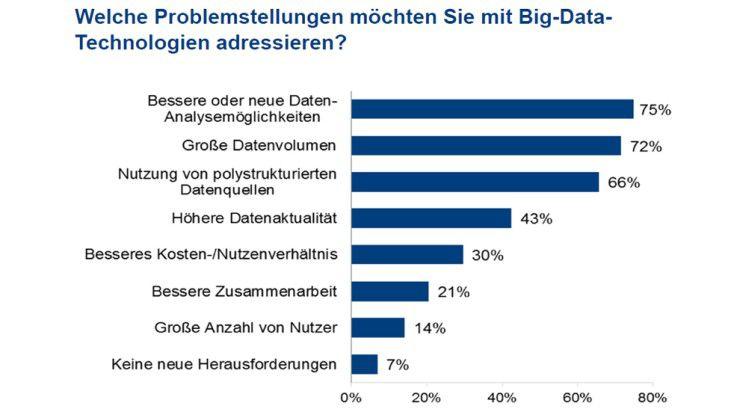 Welche Problemstellungen möchten Sie mit Big-Data- Technologien adressieren?