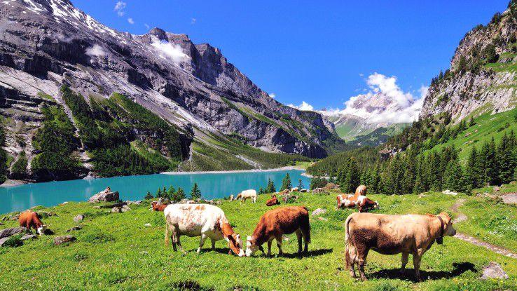 Die Schweiz ist nicht nur schön, sondern auch lukrativ, besonders für IT-Spezialisten.