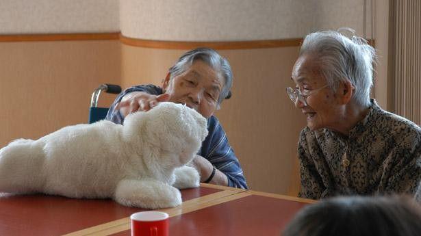 Die Roboterrobbe Paro von AIST kommt bereits in Pflegeheimen und Krankenhäusern zum Einsatz.
