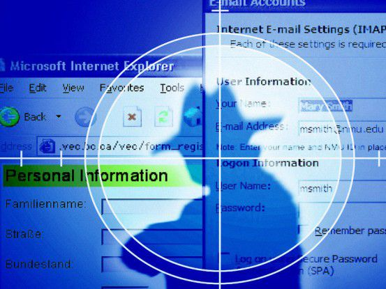 Hacker organisieren sich heutzutage weltweit sehr professionell und arbeitsteilig. Für ihre Raubzüge im Web nutzen sie sehr häufig Botnets.