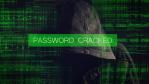 Data-Security-Spezialisten: Angreifern auf der Spur - Foto: igor - Fotolia.com
