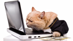 Spionage im Büro: Achtung vor diesen fiesen Tricks der Chefs - Foto: Kruglov_Orda - www.shutterstock.com