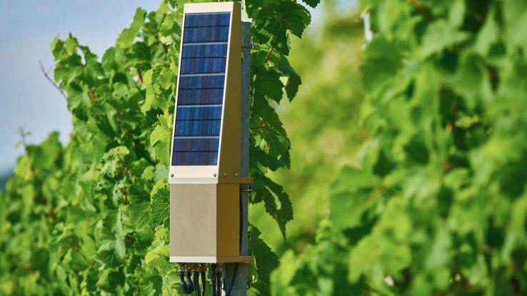 Die Sensoren erfassen Temperatur, Luft und Bodenfeuchtigkeit sowie Sonneneinstrahlung und Lichtstärke. Ferner können die Blattfeuchte, Boden PH- und Nährstoffwerte gemessen werden