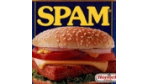SPF und Microsoft kombinieren ihre Anti-Spam-Standards