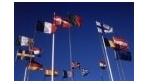 Arbeiten im Ausland: Jung, bissig, motiviert