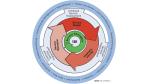 IT-Service-Management: Wohin steuert Itil? - Foto: itSMF
