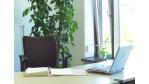 Neue Arbeitswelt: Coworking - Wir nennen es Office - Foto: Manolito/Fotolia.com