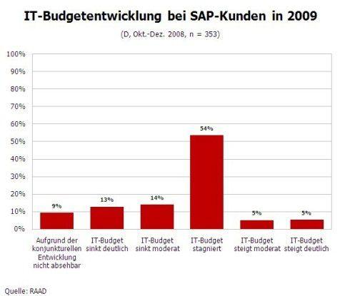 IT-Budgetentwicklung bei SAP-Kunden