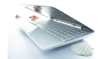 Neues Netbook: Asus baut Eee-PC-Reihe aus - Foto: Asus