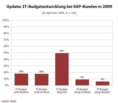 IT-Budget bei SAP-Kunden in 2009