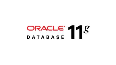 Oracle Database 11g Release 2: Optimiertes Grid-Computing