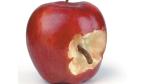 Vorsicht Phishing-Mails: Mit iPhone 6 und iWatch auf falsche Apple-Seite gelockt - Foto: James Steidl/Fotolia.com