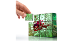Digitale Transformation: Ideen und Use Cases - Harte Währung in der Digital Economy - Foto: itestro - Fotolia.com