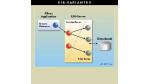 Java als Integrationsplattform/Gesamte Infrastruktur über EJB-Server: Enterprise Javabeans reduzieren Programmierung auf Geschäftslogik